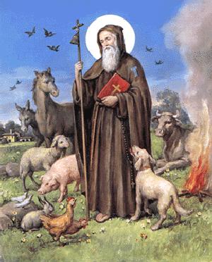 Festa di Sant Antonio Abate Cermignano, Tossicia, Arsita, Bisenti